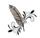 graphic-design-feather-sketch-flourish-isolated-49377017